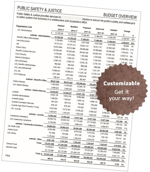 Standard Budget Book content